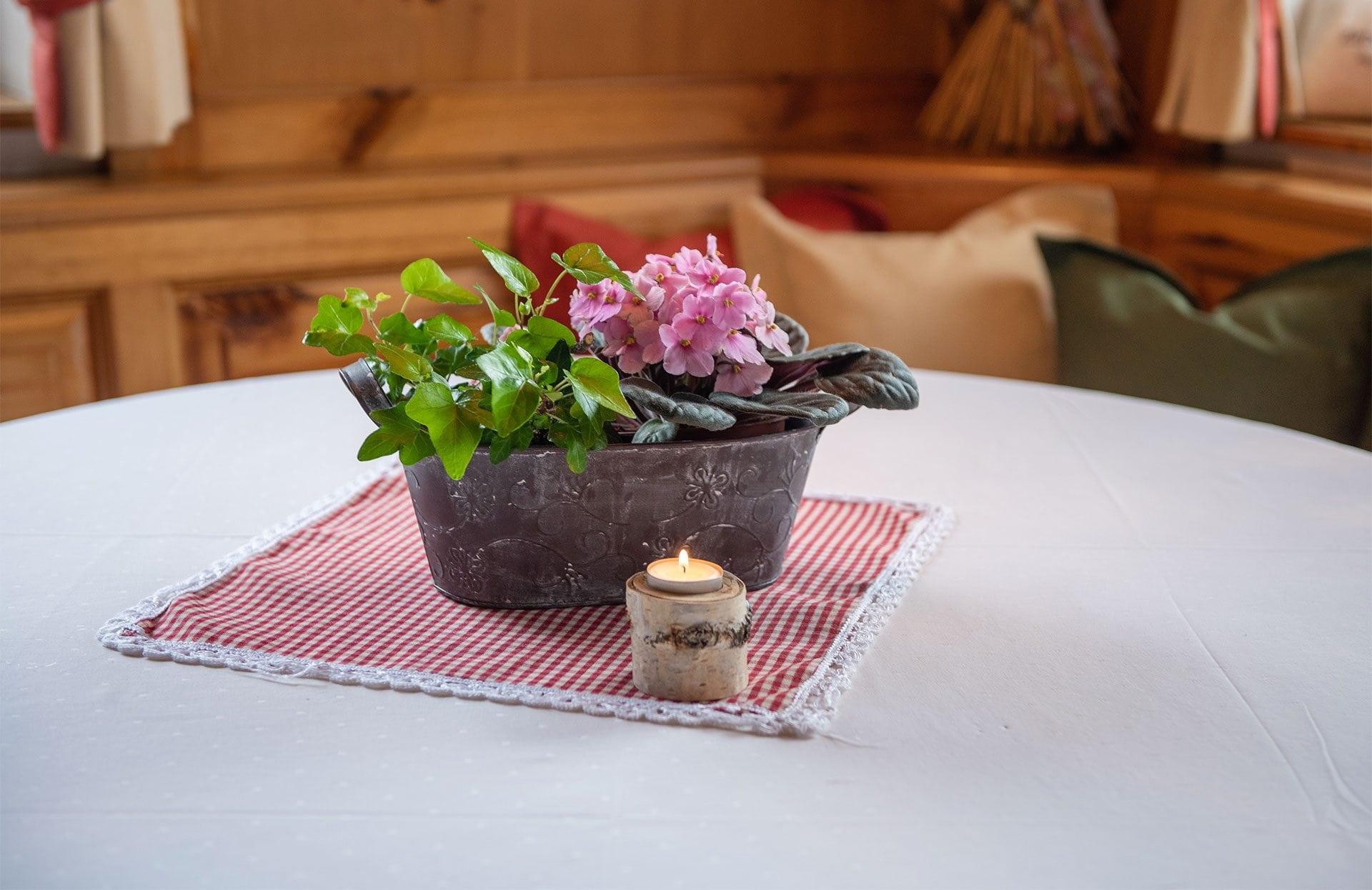 Gemütliche Ferienwohnungen in Radstadt, Salzburger Land
