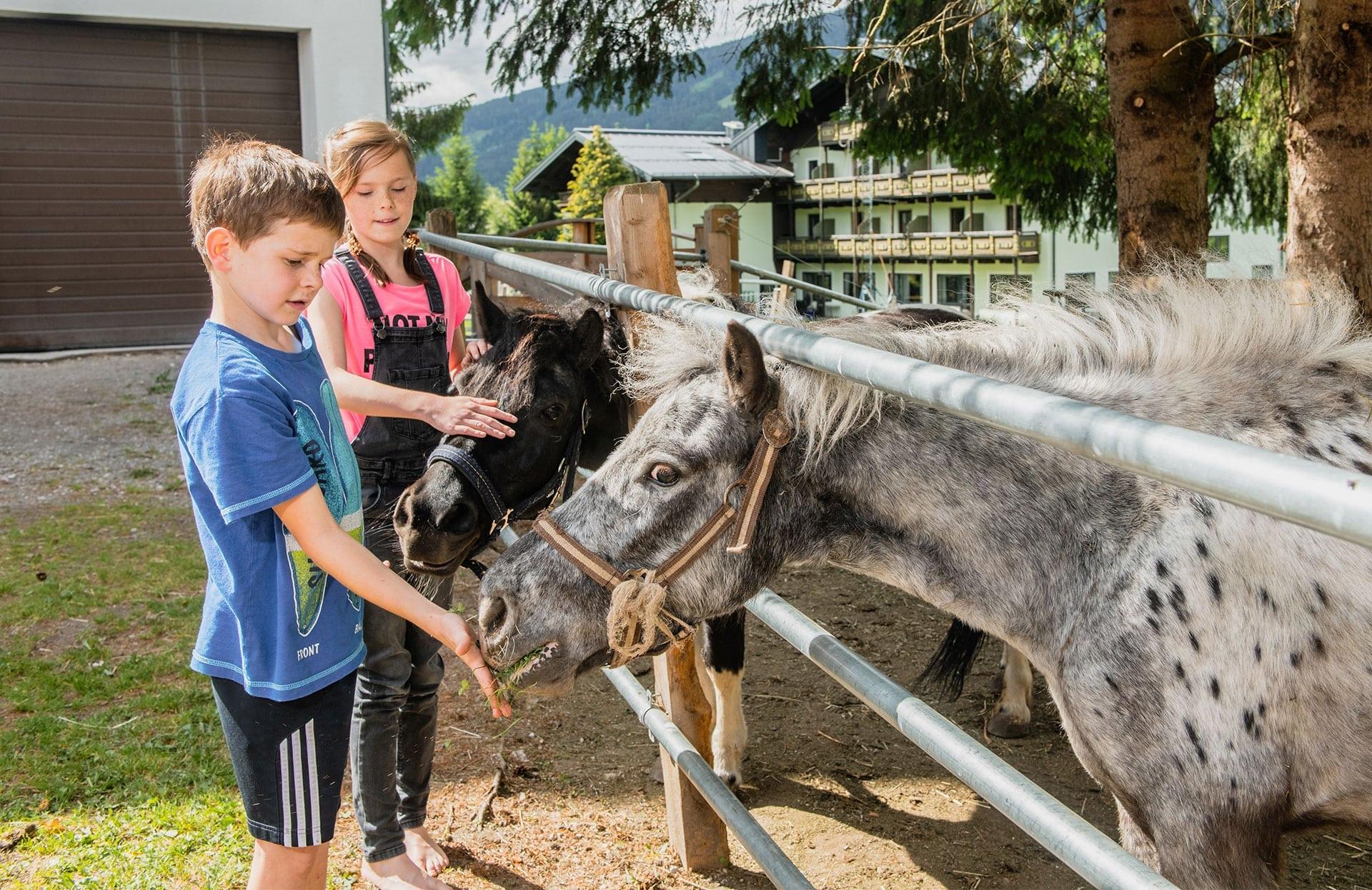 Bauernhofurlaub in Radstadt, Salzburger Land